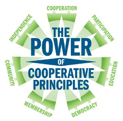 Co-Op-Principles